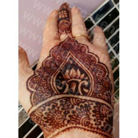 Lot de 10 cônes de henné naturel prêt à l'emploi Asha Savla