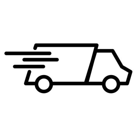 option de livraison chronopost